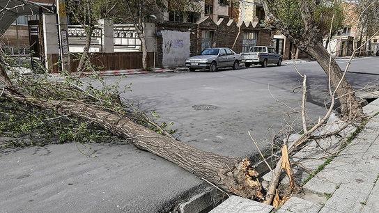 تصاویری وحشتناک از خسارات طوفان در ارومیه7