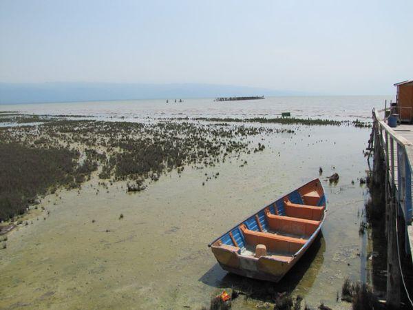خلیج گرگان گَندآب شد