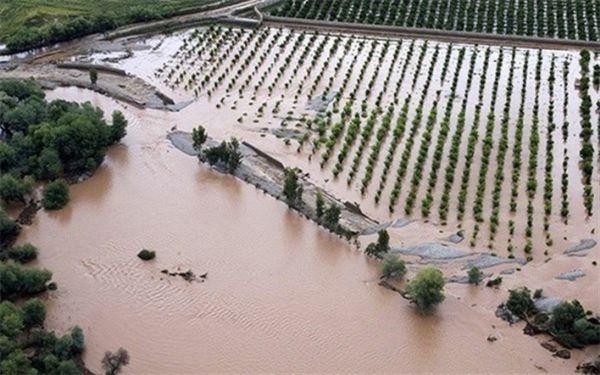 پرداخت کمکهای بلاعوض ۵ میلیارد تومانی به سیلزدگان استان