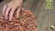 فیلم/ کشف تریاک در تخمه ژاپنی