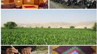 ۵۵۰۰ شغل در روستاهای گلستان ایجاد شد