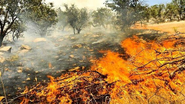مهار آتش سوزی در پارک ملی گلستان
