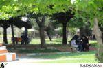 پارک شهر کردکوی خلوتگاه اختلاط پسران و دختران+تصاویر