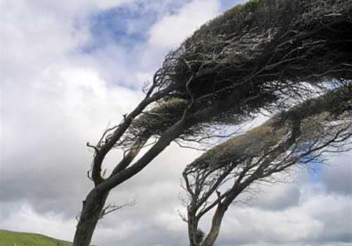 وزش باد شدید در گلستان