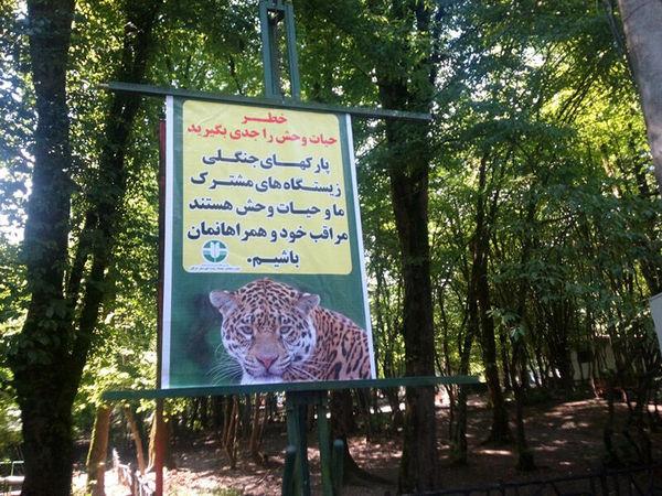 گردشگران مراقب باشند و به هشدارهای محیط زیست توجه کنند