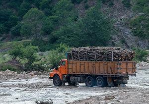 کشف و صبط چوب قاچاق در استان