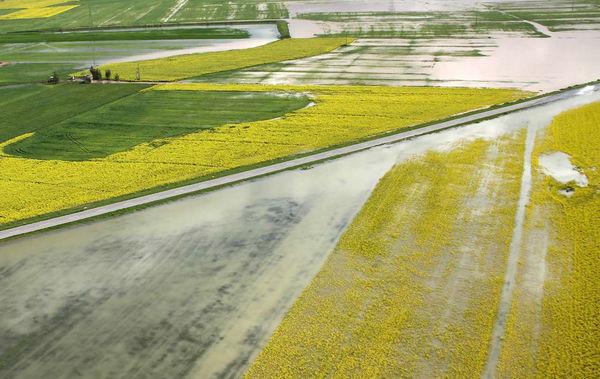 ادامه پرداخت کمک بلاعوض به کشاورزان سیلزده گلستان