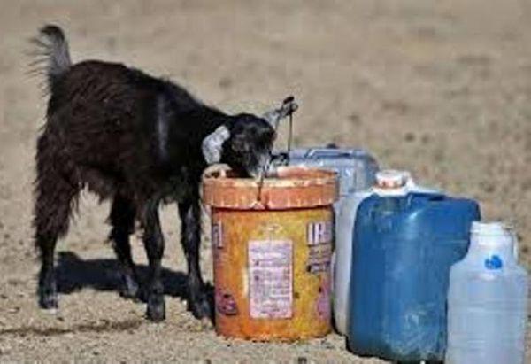 چالش جدی مصارف غیرشرب آب سالم در گلستان