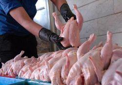 قیمت مرغ باز هم گران شد