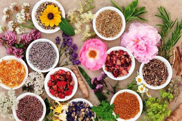 ۶ هزار تن گیاه دارویی در گلستان تولید شد