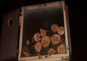 کشف محموله چوب قاچاق سرخدار و راش در کردکوی