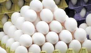 کشف ۳۰۷تُن تخم مرغ احتکاری در گنبدکاووس