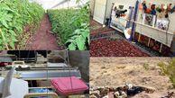 روستاهای گلستان در مسیر پیشرفت اقتصادی/ دولت وعده حمایت از طرحهای نوآورانه داده است