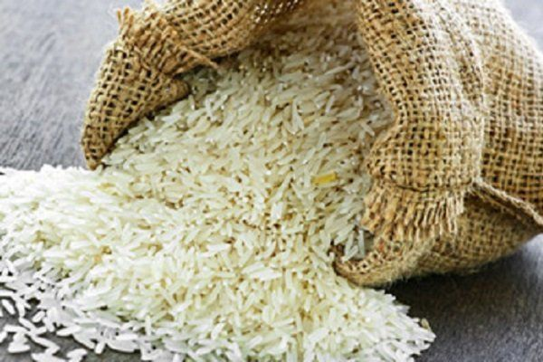 نیازی به واردات برنج نداریم/حداکثر قیمت هر کیلو برنج در شمال ۱۴ هزار تومان