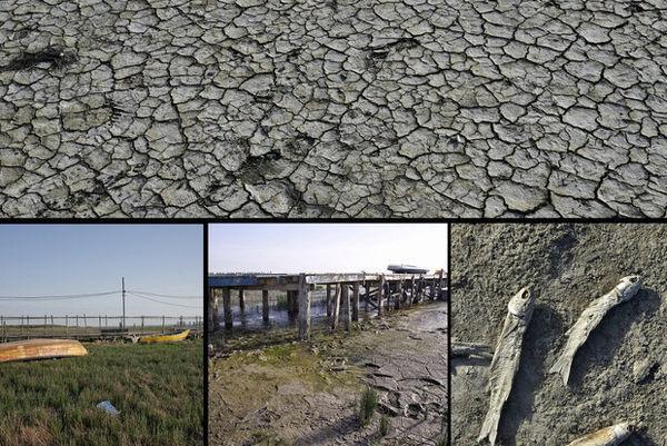 باز شدن پای ریزگردها به شمال/بیآبی دسترنج کشاورزان را به باد داد