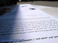 کوه خواری و تخریب جنگل های در شیرین آباد را پایان دهید+ تصاویر