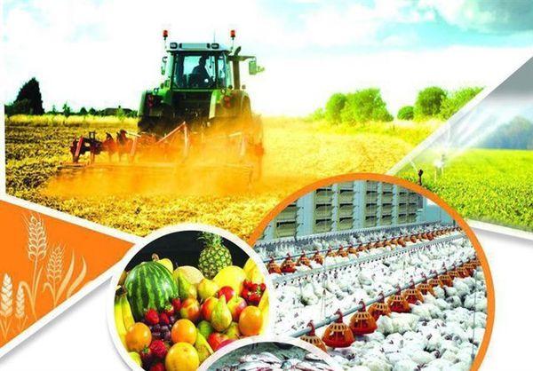 ۶۰ میلیارد ریال تسهیلات روستایی و عشایری در آزادشهر پرداخت شد