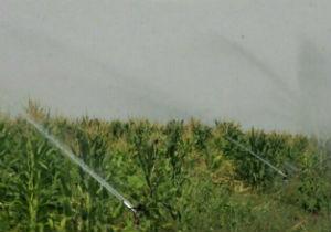 بهره برداری از طرح آبیاری تحت فشار اراضی گرگان