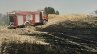 آتش سوزی زمین کشاورزی در گلستان/یک هکتار گندم زار در آتش سوخت