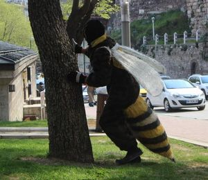 مرد زنبوری در خیابانهای ترکیه+عکس