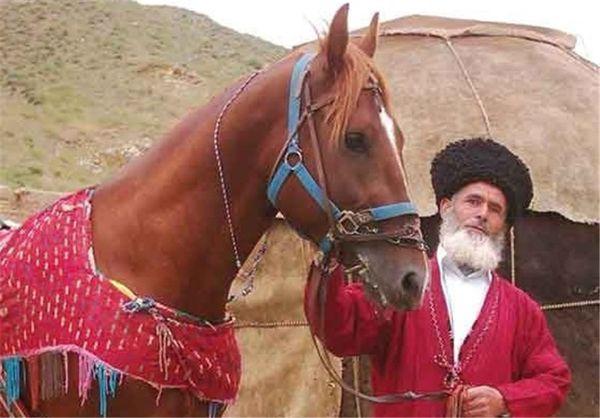 جشنواره ملی زیبایی اسب ترکمن در استان گلستان برگزار شد
