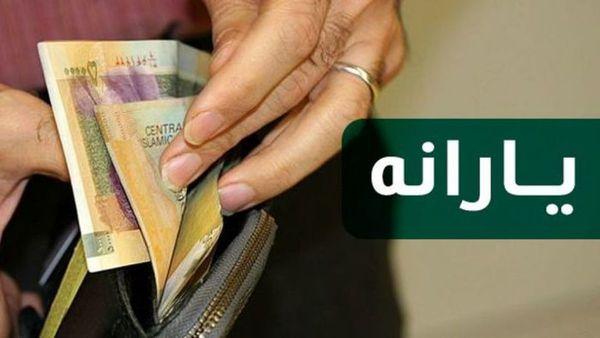یارانه در دولت جدید چگونه پرداخت می شود؟/ مراحل ثبت نام یارانه بگیران جدید