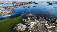 آیا محیط زیست مانع نجات خلیج گرگان است؟