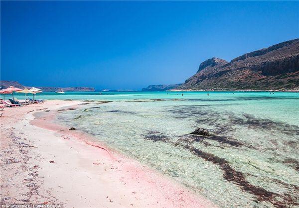 زیباترین ساحل صورتی جهان+تصاویر