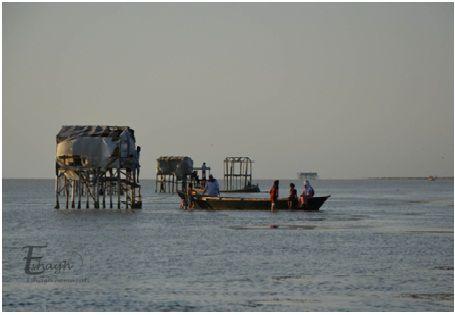 آمادهسازی زیرساختهای گردشگری ساحل گمیشان