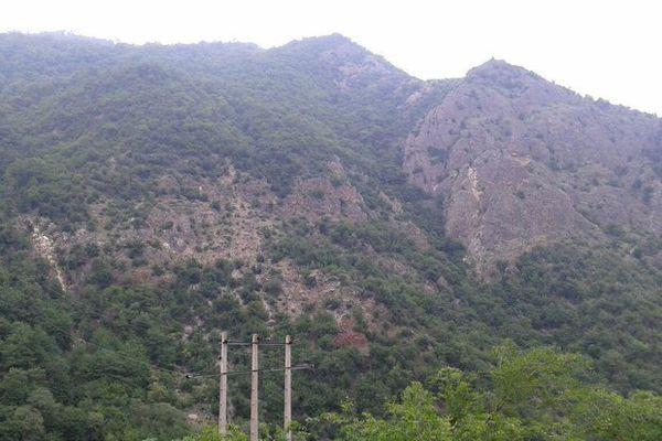 امضا تفاهم نامه سپاه و بسیج با منابع طبیعی برای حفظ جنگلهای هیرکانی