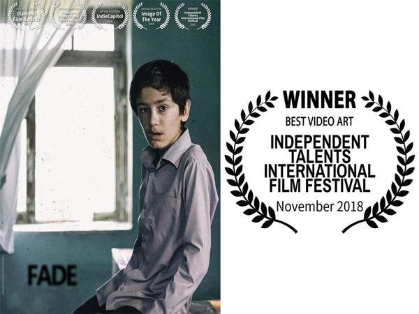 """عنوان بهترین ویدئو آرت فستیوال """"Independent Talents""""  کشور آمریکا در مشت هنرمند گلستانی"""