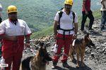 عکس/ سگ های زنده یاب در محل معدن یورت