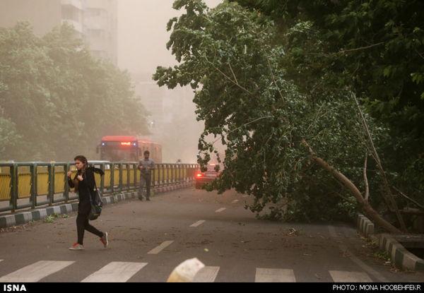 طوفان 94 کیلومتری پیشدرآمد سونامی سرما در گلستان
