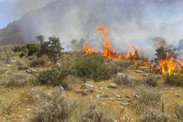 آتش سوزی پیاپی در تپه صیادشیرازی گرگان احتمال عمدی بودن حریق