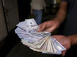 گرانی سکه و دلار ادامهدار است؟