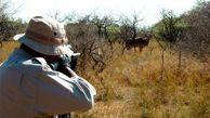 درگیری ماموران محیط زیست با شکارچیان غیرمجاز در گلستان