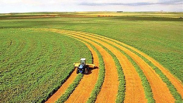 کمک ستاد اجرایی فرمان امام به کشاورزان دیم کار