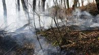 ۸۵۰ کیلومتر آتش بر ناجی جنگلهای گلستان