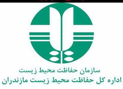 حمله مسلحانه نیروهای محیط زیست مازندران به قایق بندرگزی ها+ عکس
