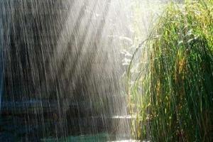 ورود سامانه بارشی به کشور/ هشدار مهم هواشناسی به کشاورزان برخی استانها
