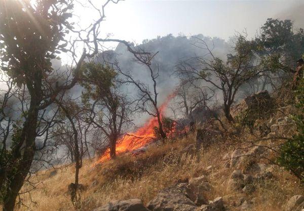 هشدار آتش سوزی در عرصههای جنگلی گلستان صادر شد/دمای هوا به ۴۰ درجه میرسد