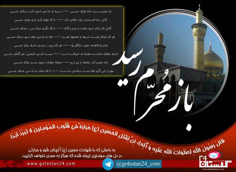 محسن رائیجی شهرداری گرگان 2