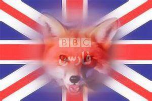 فیلم/ توهین وقیحانه BBC به مردم فلسطین!