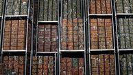 شرایط جدید صادرات میوه اعلام شد+سند