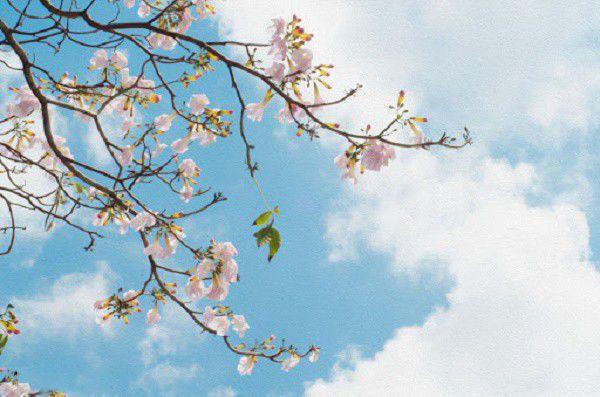 راه های پیشگیری از بیماریهای فصل بهار