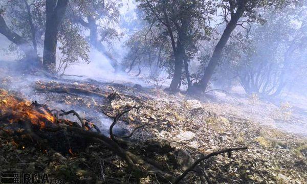عامل انسانی دلیل اصلی آتشسوزی جنگل گلستان است