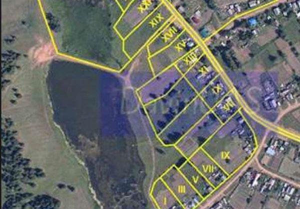 اجرای طرح کاداستر در ۴۰۰ هزار هکتار از عرصههای جنگلی گلستان