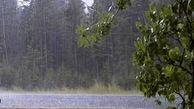 ورود سامانه بارشی به استان و وزش باد شدید