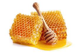 چرا عسل فاسد نمی شود؟