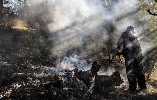 آتش سوزی عمدی جنگلها غیر قابل انکار است
